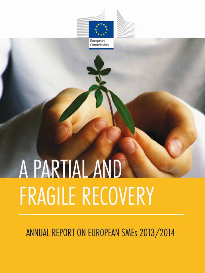 eu-annual-report-smes-a-partial-and-fragile-recovery-2014